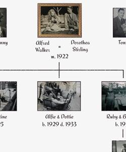 the Walker Family Tree